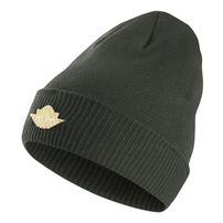 Air Jordan Jumpman Knit Hat Groove Green 801770-327
