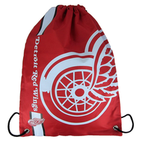 Forever Collectibles NHL Cropped Logo Gym Bag Red Wings